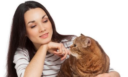 Breakup Blues? Why Cats Make Better Partners - woman girl cat pet pets