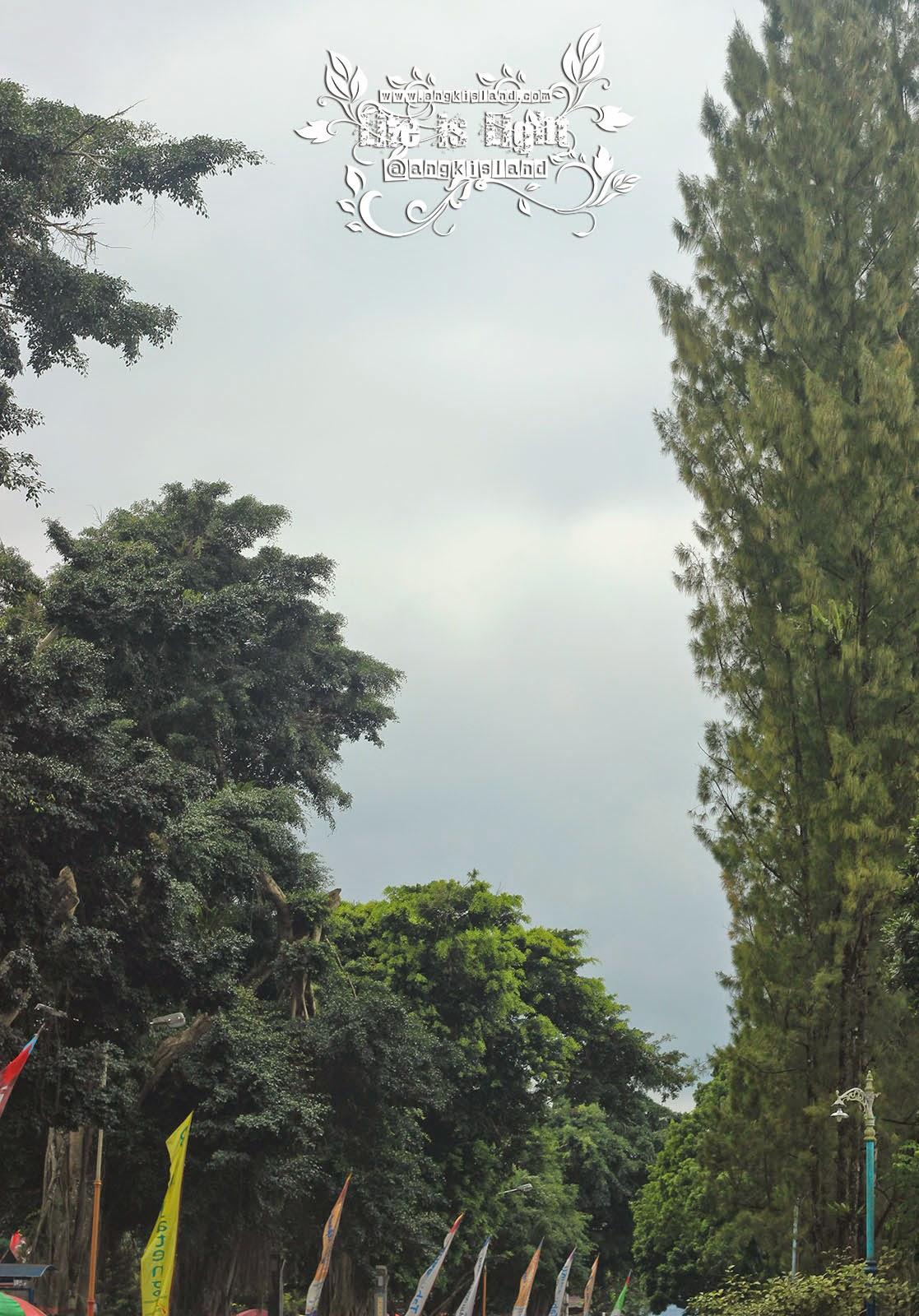 langit wonosobo