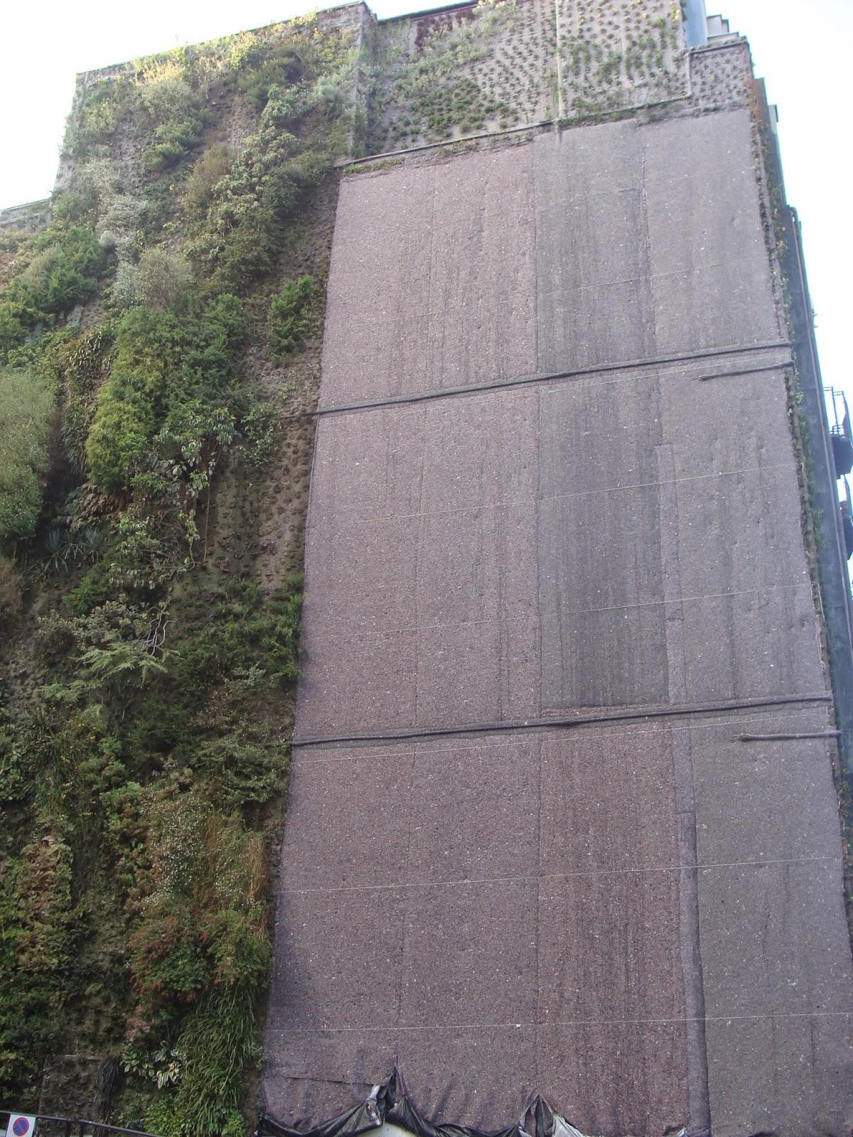El rincon de un jardin jard n vertical en madrid for Jardin vertical madrid