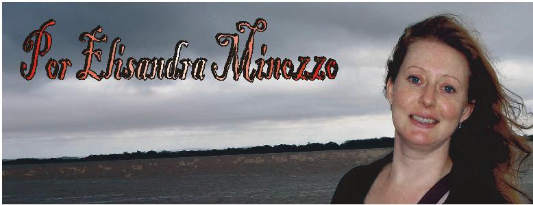 Por Elisandra Minozzo