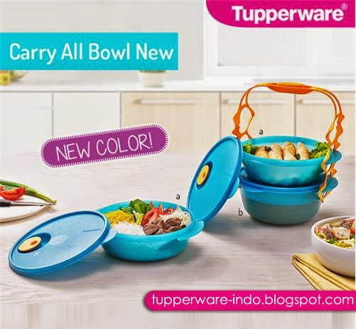 Tupperware Carry All Bowl New
