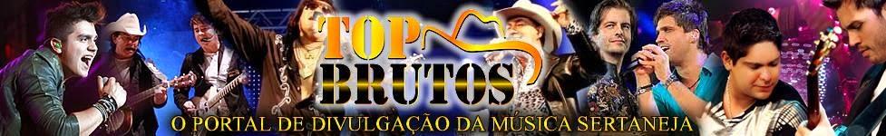 Baixar Sertanejo | Top Brutos