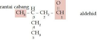 3-metil-pentanal