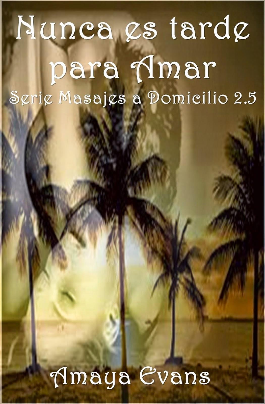 Serie Masajes a domicilio - Amaya Evans (EPUB+PDF) Portada%2B4