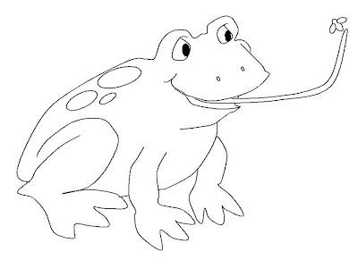 Rana cazando mosca para colorear y pintar ~ 4 Dibujo
