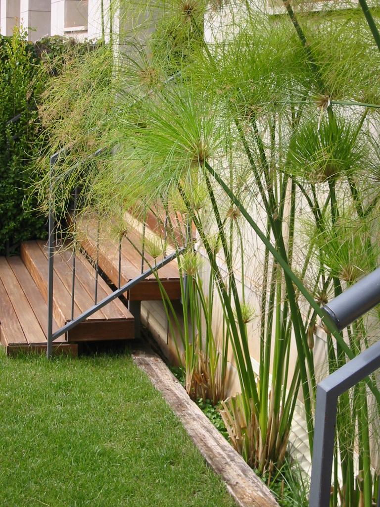 Jardinitis selecci n de fotograf as de nuestros jardines en flickr - Fotos de jardines minimalistas ...