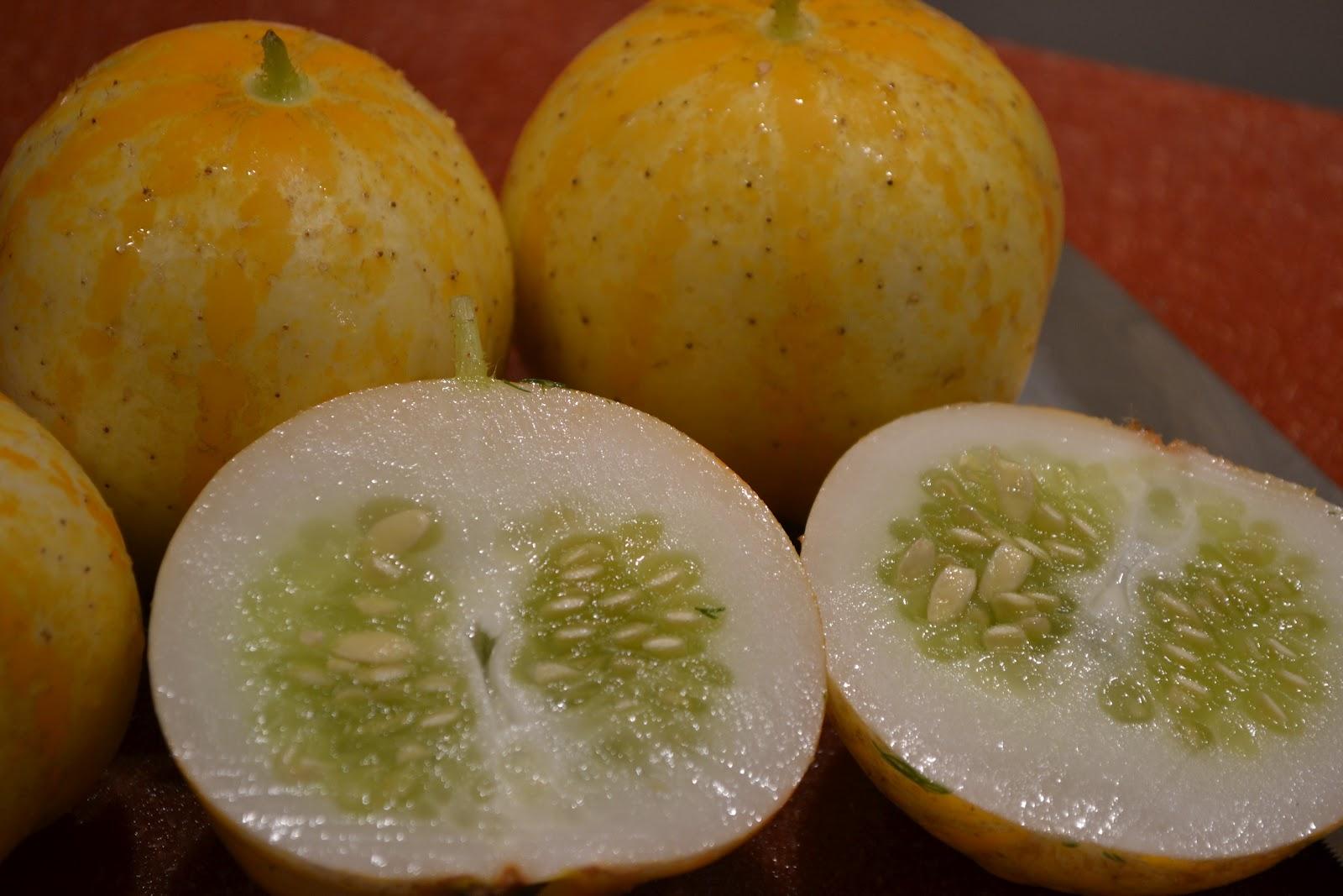 Upbeet Living: Lemon Cucumber Tofu Salad
