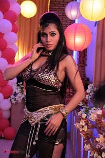 Aarti Puri Latest Spicy Pictures for a Item Dance  0003