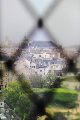 Parigi dalle vetrate di Notre Dame