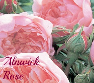 Alnwick