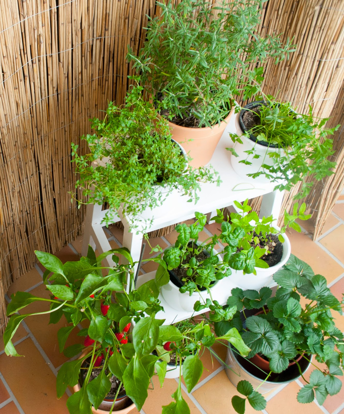 Bekväm IKEA mehr als ein Leben Balkon Outdoor Sommer 2014 Kräuter Basilikum Schnittlauch Petersilie Rosmarin Thymian Minze