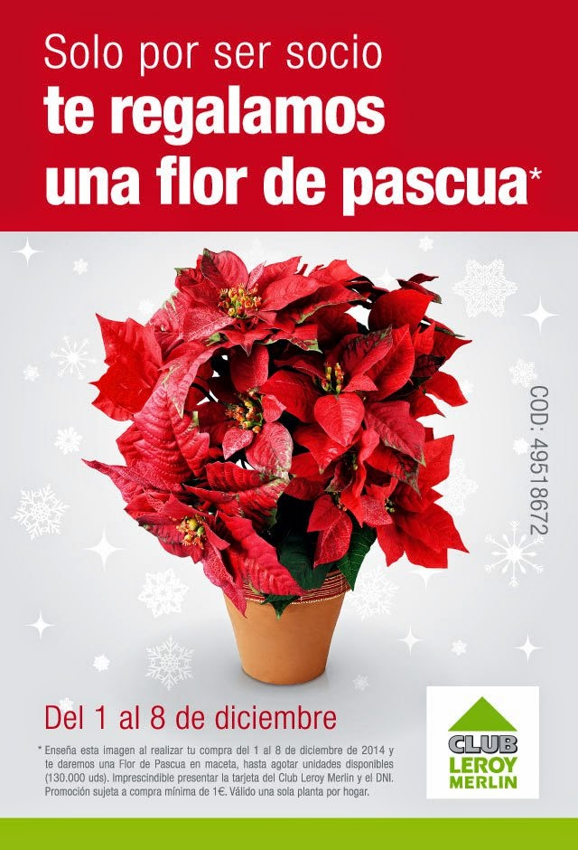 Step by step barcelona flor de pascua gratis en for Club leroy merlin es