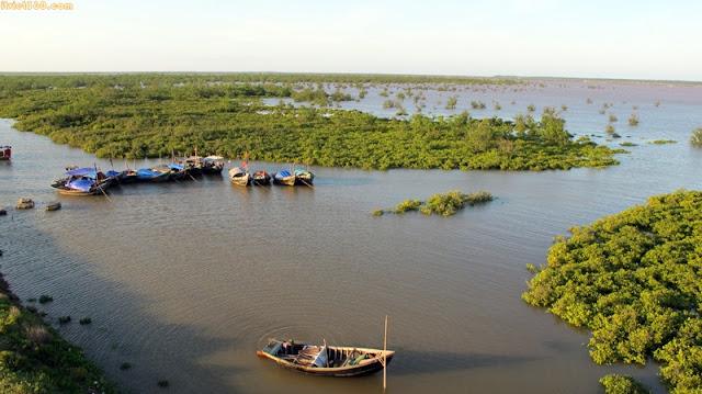 Hình ảnh đẹp về Ninh Bình - danh lam thắng cảnh, Vùng ven biển Kim Sơn là khu dự trữ sinh quyển thế giới