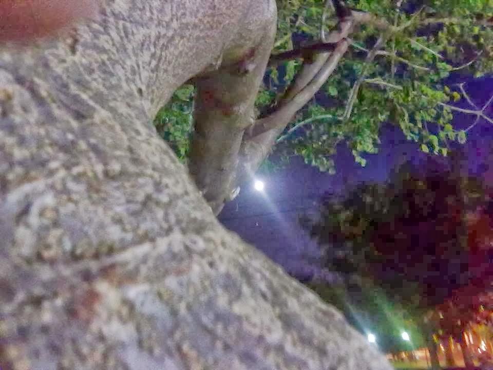La luna tomada en la Plaza de Pappo - Ciudad de Buenos Aires - Argentina