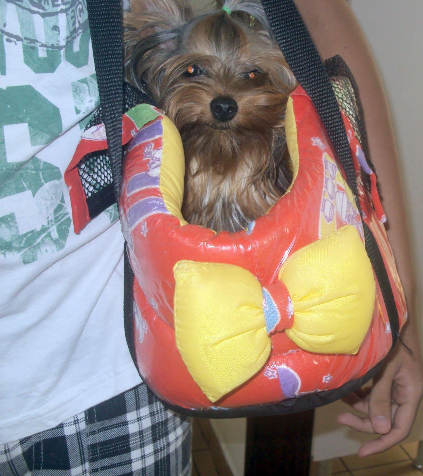 Bolsa De Transporte Para Cães Louis Vuitton : Soltando os bichos bolsas para cachorro