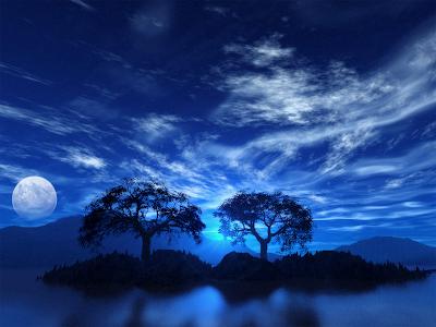 POEMAS SIDERALES ( Sol, Luna, Estrellas, Tierra, Naturaleza, Galaxias...) Dos%2B%25C3%25A1rboles