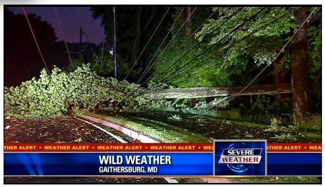 Downed Power Lines in Gaithersburg, MD