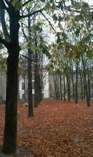 Era la época de la caída de las hojas...