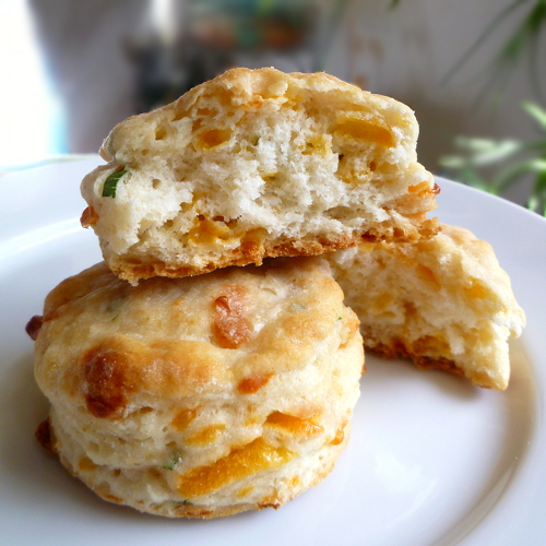 Cheddar-Scallion Biscuits