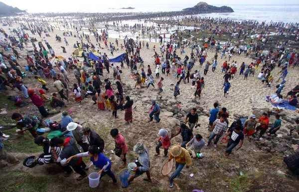 Upacara Bau Nyale di Pantai Seger, Kuta Lombok