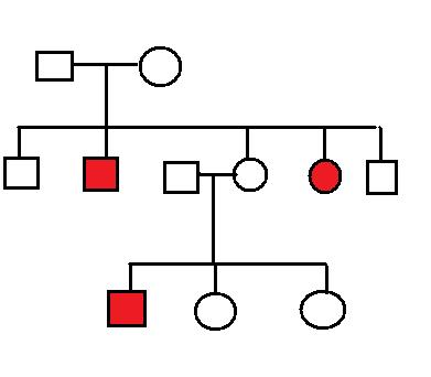 BIOLOGY for AIPMT: PEDIGREE ANALYSIS: PRACTICE PROBLEMS