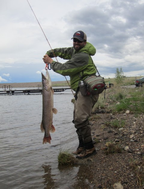 Black hills fly fishing high water for Black hills fly fishing