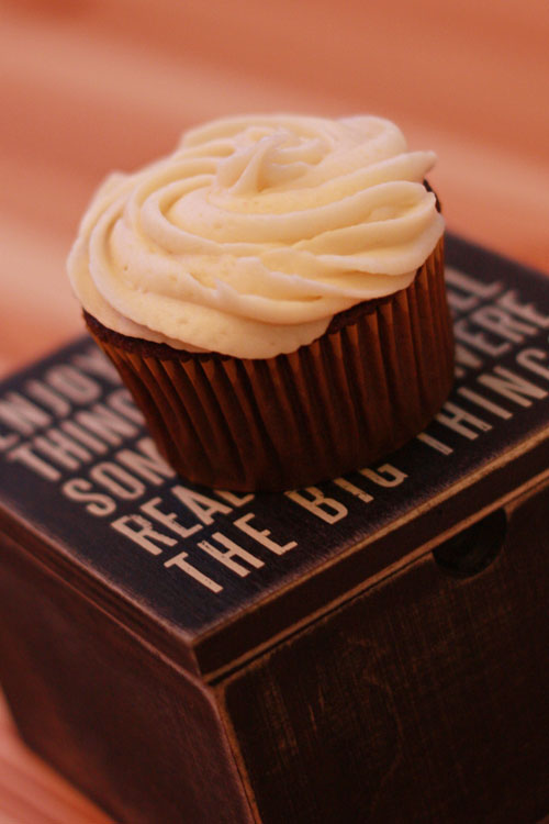 One With the Cupcakes: The One With the Guinness Chocolate Cupcakes ...