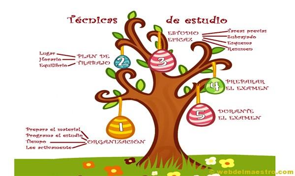 http://webdelmaestro.com/wp-content/uploads/2013/04/TECNICAS-DE-ESTUDIO-PRIMARIA1.pdf