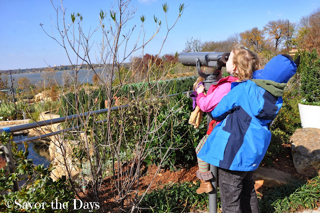 Viewing White Rock Lake from the Rory Meyers Children's Adventure Garden at the Dallas Arboretum