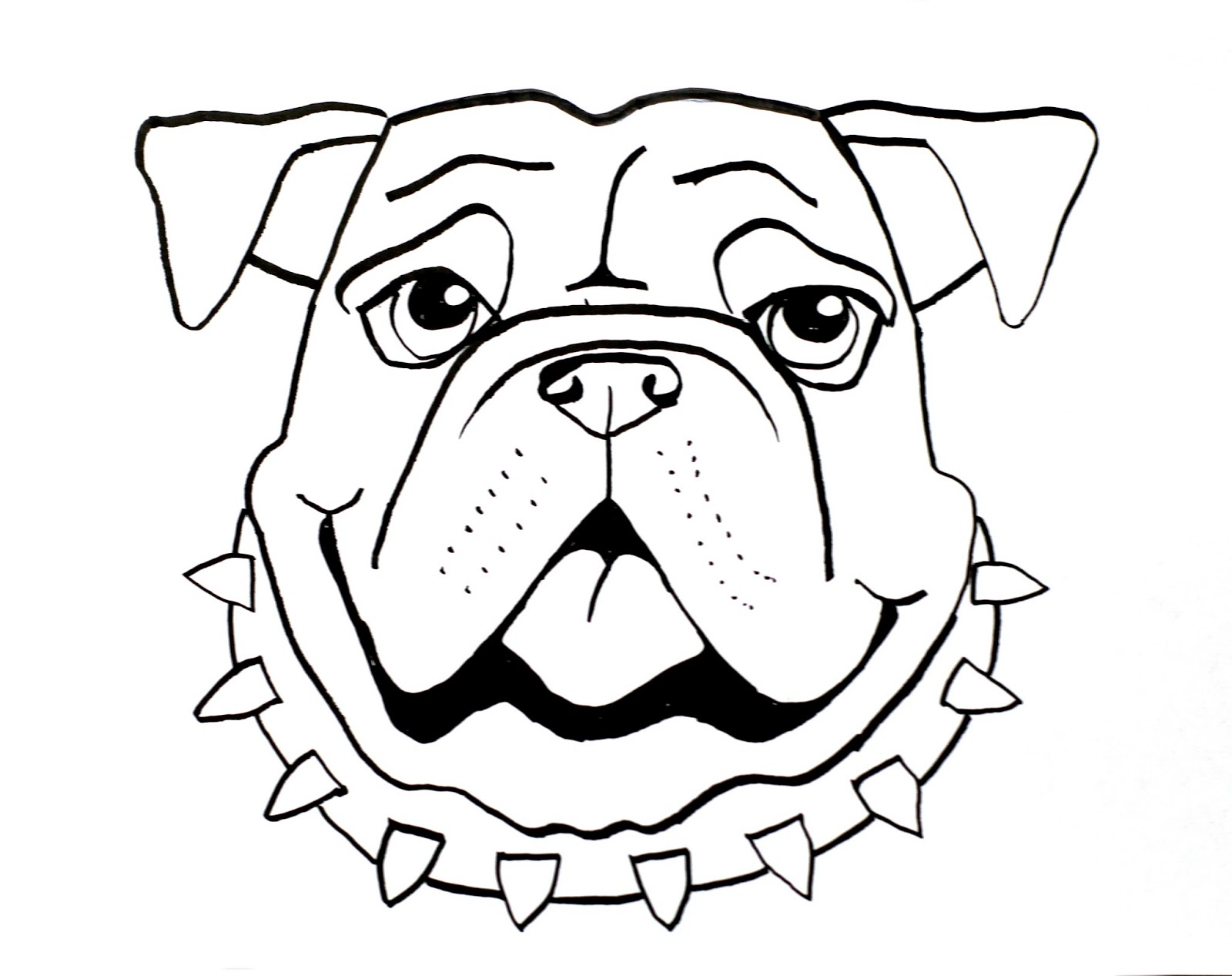 Bulldog Face Sketch Templates