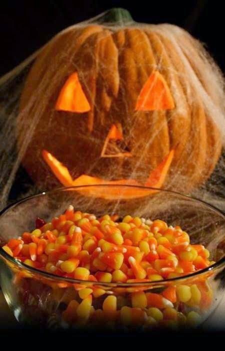 Cobweb Pumpkin Candy Corn