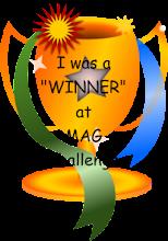 M.A.G. Challenge Winner