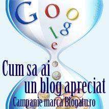 Cum sa ai un blog apreciat