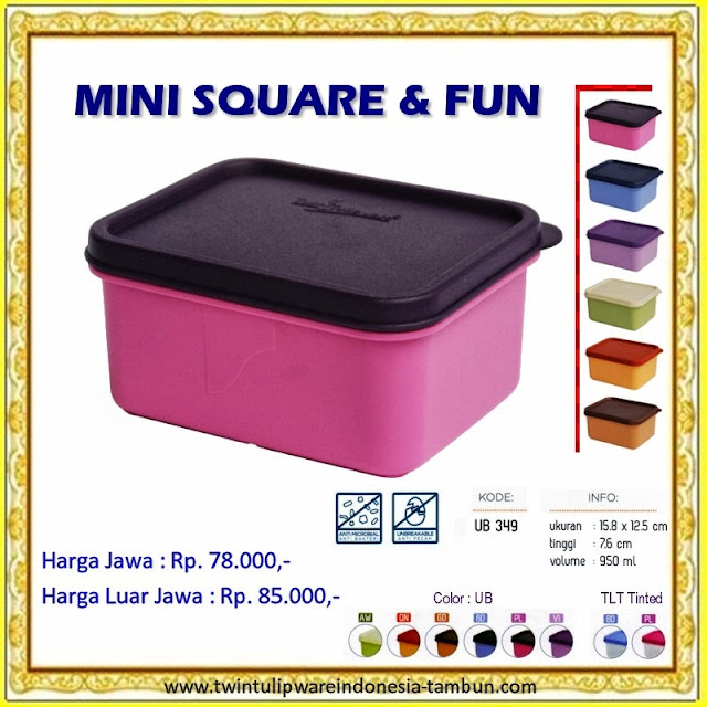 Mini Square & Fun Tulipware 2013