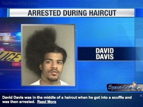 funny people haircut picture