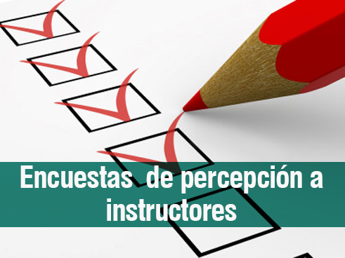 Encuesta a Instructores