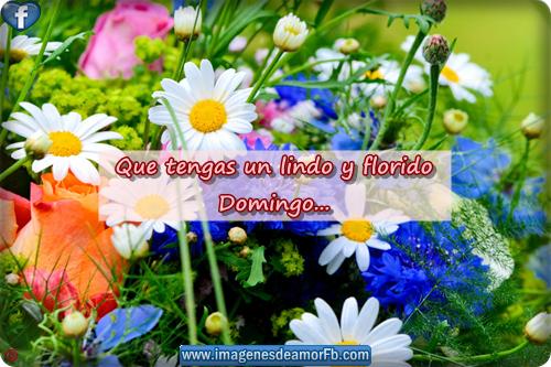 imagenes de que tengas un lindo y florido domingo