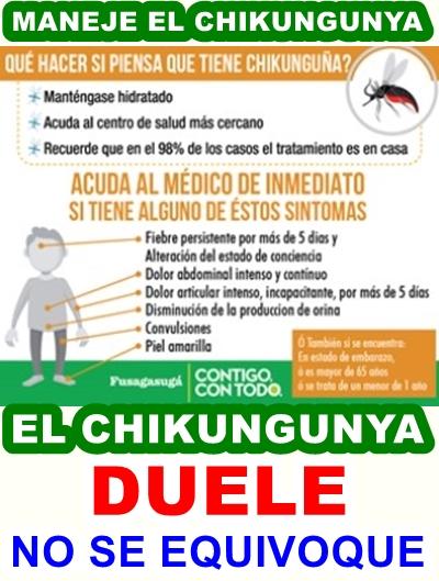 FUSAGASUGÁ: Chikungunya y Dengue