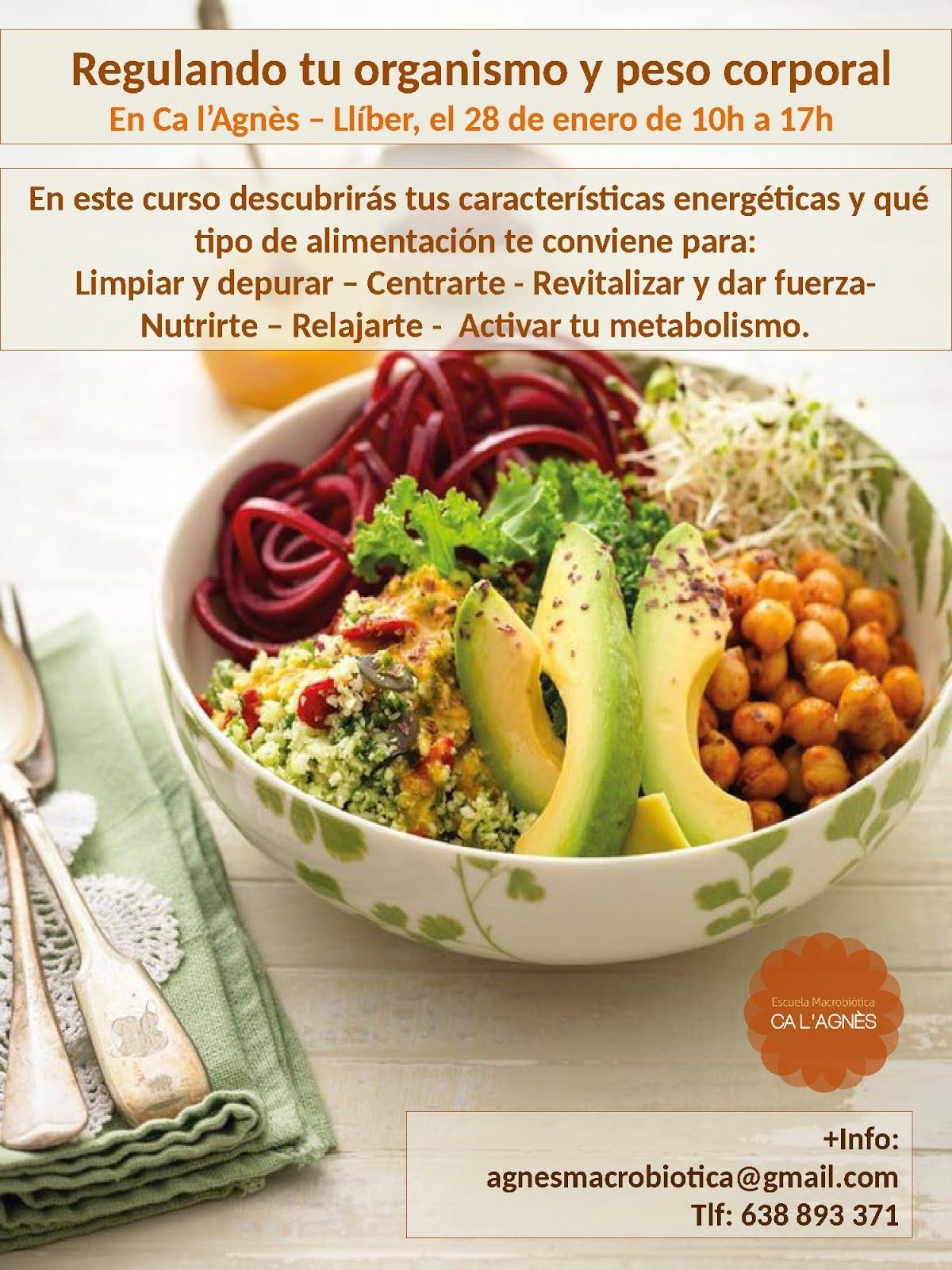 REgulando tu organismo y peso corporal