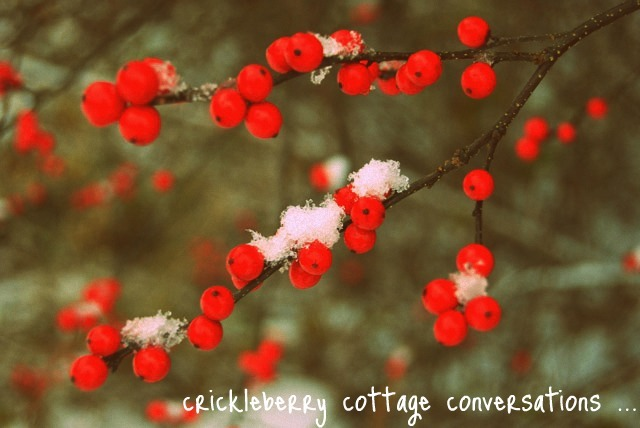 Crickleberry Cottage Conversations