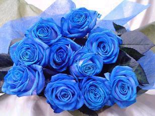 ramo de rosas azules y rojas Mundo Imágenes - Ramos De Rosas Azules Imagenes