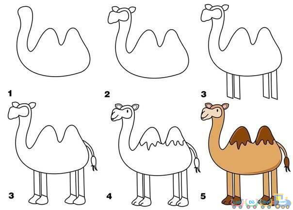 Cách vẽ hình con thú lạc đà