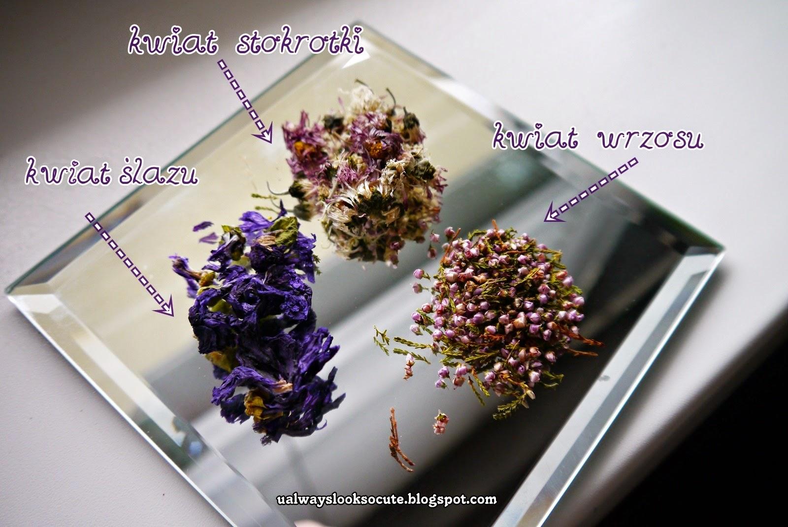 fioletowe zioła