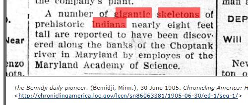 1905.06.30 - The Bemidji Daily Pioneer