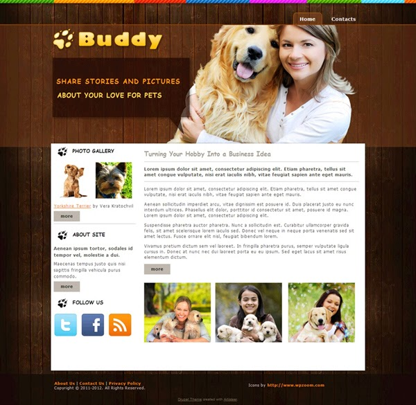 Buddy - Free Drupal Theme