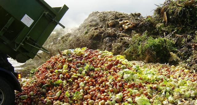 Bildergebnis für food waste shocking