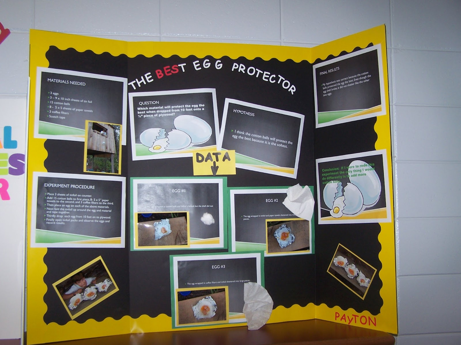 egg drop science fair project