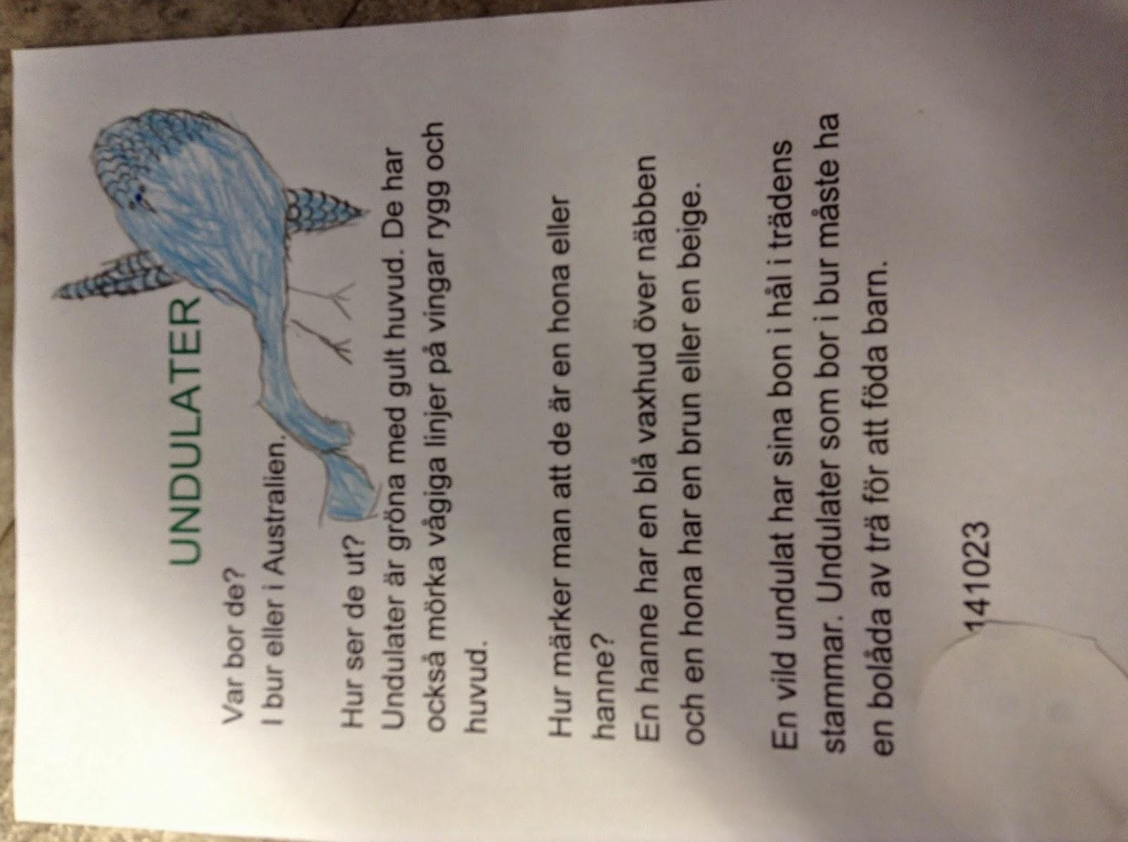 faktatext om djur