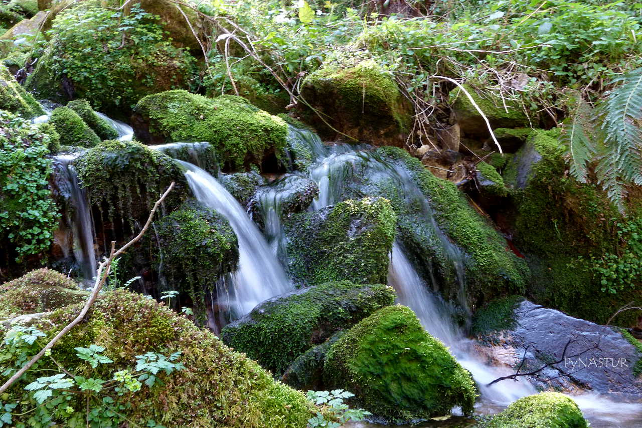Cascada en el Regueru el Dornín