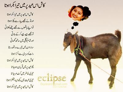 Funny Poem Bakara Eid